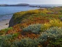 NRS Fall Seminar Series I Santa Cruz Island Reserve