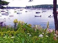 Gardening by the Sea with Roxanne Zimmer