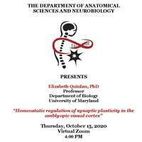 Seminars in Anatomical Sciences and Neurobiology