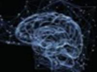 BCS & Neuroscience Undergraduate Council Guest Speaker: Dr. Renee Miller