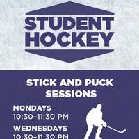 FREE Ice Hockey Stick & Puck