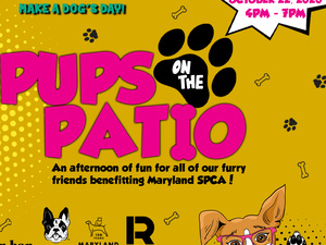 Pups on the Patio - Outdoor Dog Party
