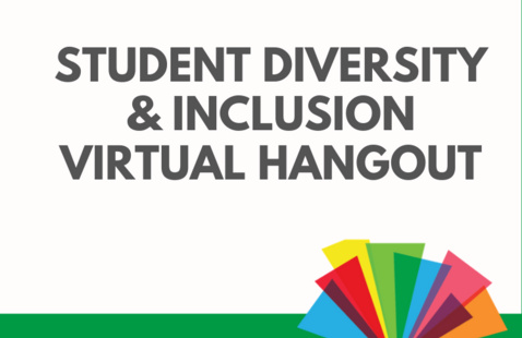 Student Diversity & Inclusion Virtual Hangout