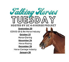 Talking Horse Tuesday- FREE Registration Open