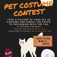 Pet costume graphic