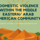 Domestic Violence among Middle Eastern Communities Panel Discussion