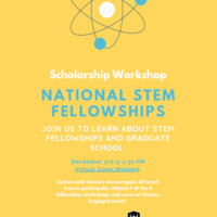 Workshop: What are National Fellowships?