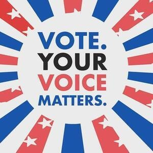 Vote Your Voice Matters