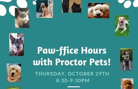 Paw-ffice Hours with Proctor Pets!