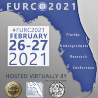 Florida Undergraduate Research Conference (FURC) 2021 Day Two