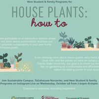 House Plants: How-To