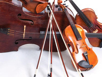 image of stringed instruments