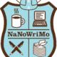 Virtual: NaNoWriMo Come Write In!