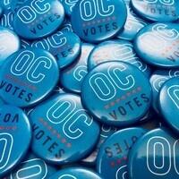 Bystander Intervention at the Polls Training