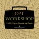 Virtual Optional Practical Training Workshop