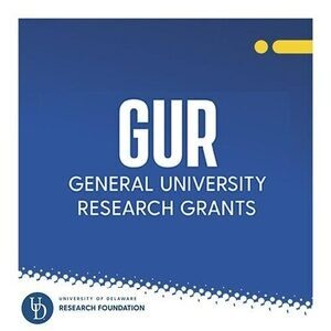 RESEARCH OFFICE: GUR Call for Proposals Application Deadline February 5, 2021