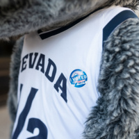 """The Nevada Wolf Pack mascot, Alphie wearing an """"I Voted"""" sticker"""