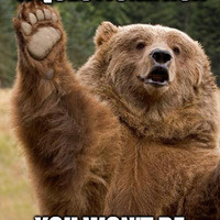 If you have a question ask. Bear raising hand.