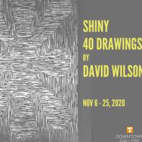 First Friday November: Shiny - 40 Drawings by David Wilson