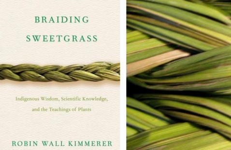 Braided Sweet Grass