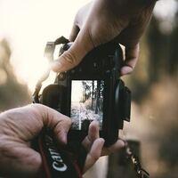 Virtual Photography Class   Beginner (Photo 101)