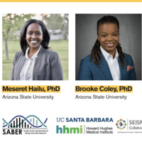 An exploratory investigation of the experiences of Black immigrant women in undergraduate STEM
