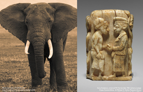 Research With Relevance: Far Away And Very Close – The History And Ethics Of Carved Elephant Ivory