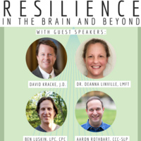 Resilience in the Brain and Beyond