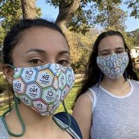 Mask Fundraiser