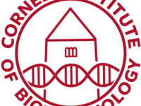 Cornell Institute of Biotechnology logo