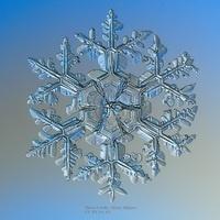 Snow Science - Virtual