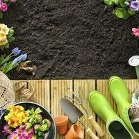 Master Gardener Intern Class 2021