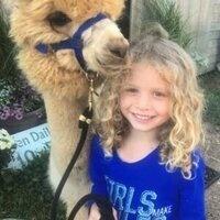 Free Alpaca Hugs!! Great photo Op!