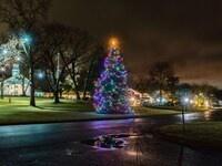 Virtual Tree Lighting