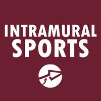 Intramural 2v2 Spikeball | FSU Campus Rec