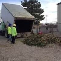 The Southern Nye County Extension Master Gardners is partnering with Valley Electric Association and Layton's Tree Service to host a Live-Cut Tree Recycling Program.