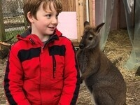 Great Gift Idea--Winter Wallaby Encounter!!