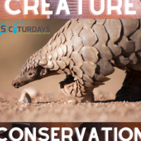 Sciturday - Creature Conservation
