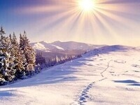 Home Alone for Winter Break?