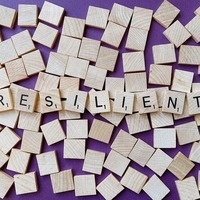 """Policy Pub: """"Bouncing Back: What the Science of Resilience Can Teach Us"""""""