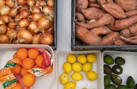 Volunteer with The Food Bank for Central & Northeast MO