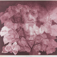 Exhibition: Drawing with Light: Mezzotint Prints from the Rossof Collection