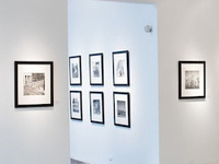 Framed photographs hanging on a white wall