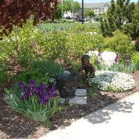 Iris Day at K-State Gardens