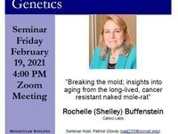 "MBG Friday Seminar: ""Breaking the mold; insights into aging from the long-lived, cancer resistant naked mole-rat"""