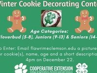 Florence County 4-H Winter Cookie Decorating Contest