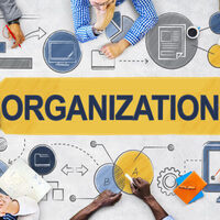 An illustration with the word organization.