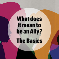 What does it mean to be an Ally? The Basics