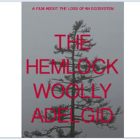 """The Hemlock Woolly Adelgid - A Film About the Loss of an Ecosystem""- Documentary Screening and Discussion with Local Experts"