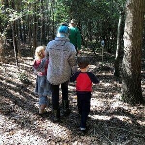 A Virtual Walk Through the Woodland Trail Workshop via Zoom